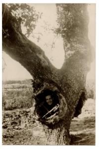 יהודה הורוביץ בעץ הבודד - קלסר 72 - 1931